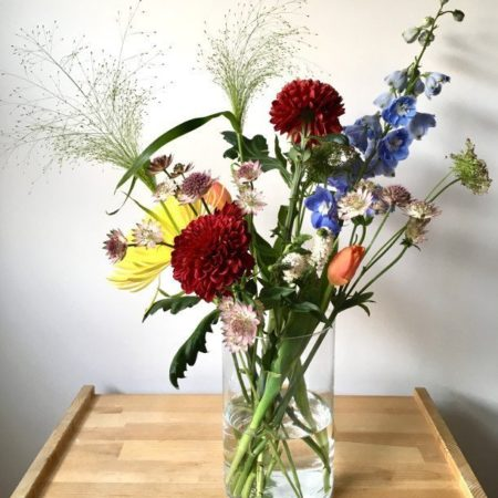 floristeria-madrid-Semilla-Salvaje-Abono-1
