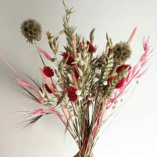 Floristeria-Madrid-Semilla-Salvaje-flores-secas