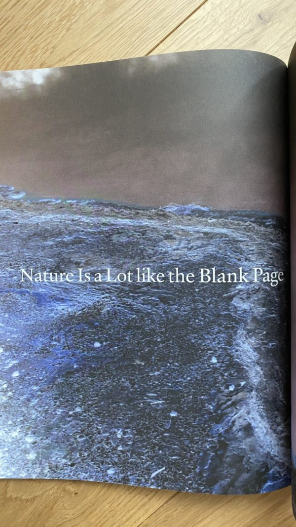 Revista the plant 14 p2