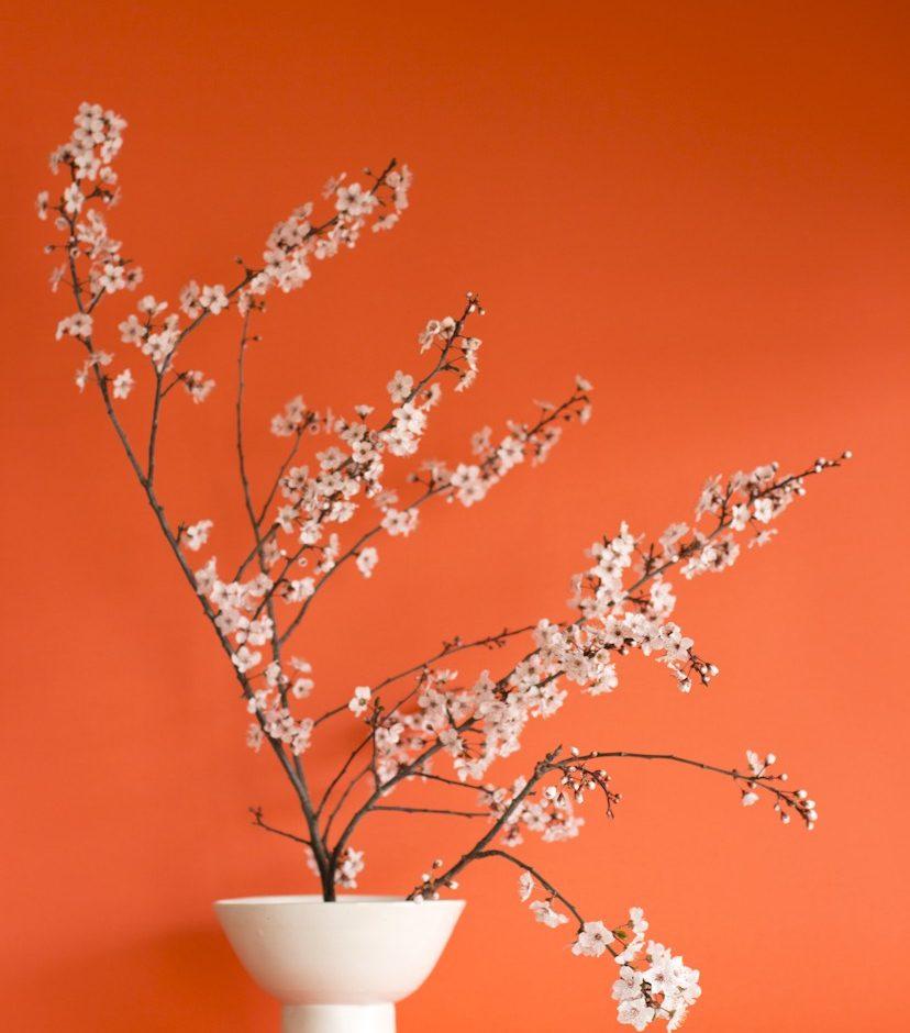 Cercle magazine Designer Floral